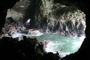 Sea Lion Caves by Herebedragons66