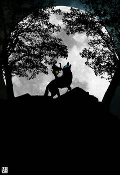 The Legend Of Zelda : Twilight Princess - Poster