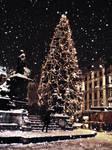 Christmas Tree by Schicksalsgoettin