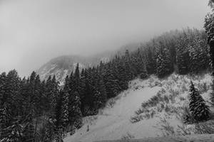 Powdered Hills by Jorgipie