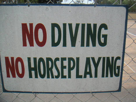 No Diving No Horseplay by ws
