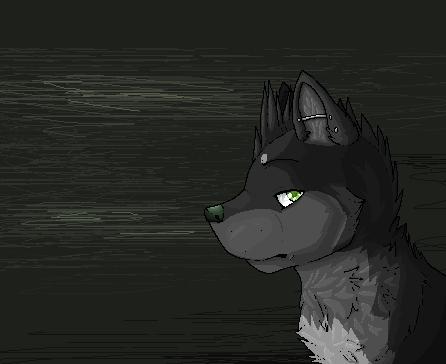 Emerald Eyes by FuzzyKitten0