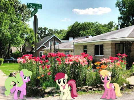 The Flower Trio Ponies in Real Life