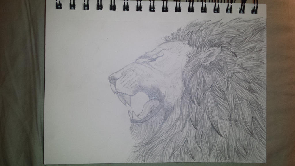 lion by Shad0wFang