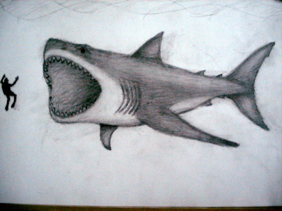 Hybrid Megalodon Coloring Page