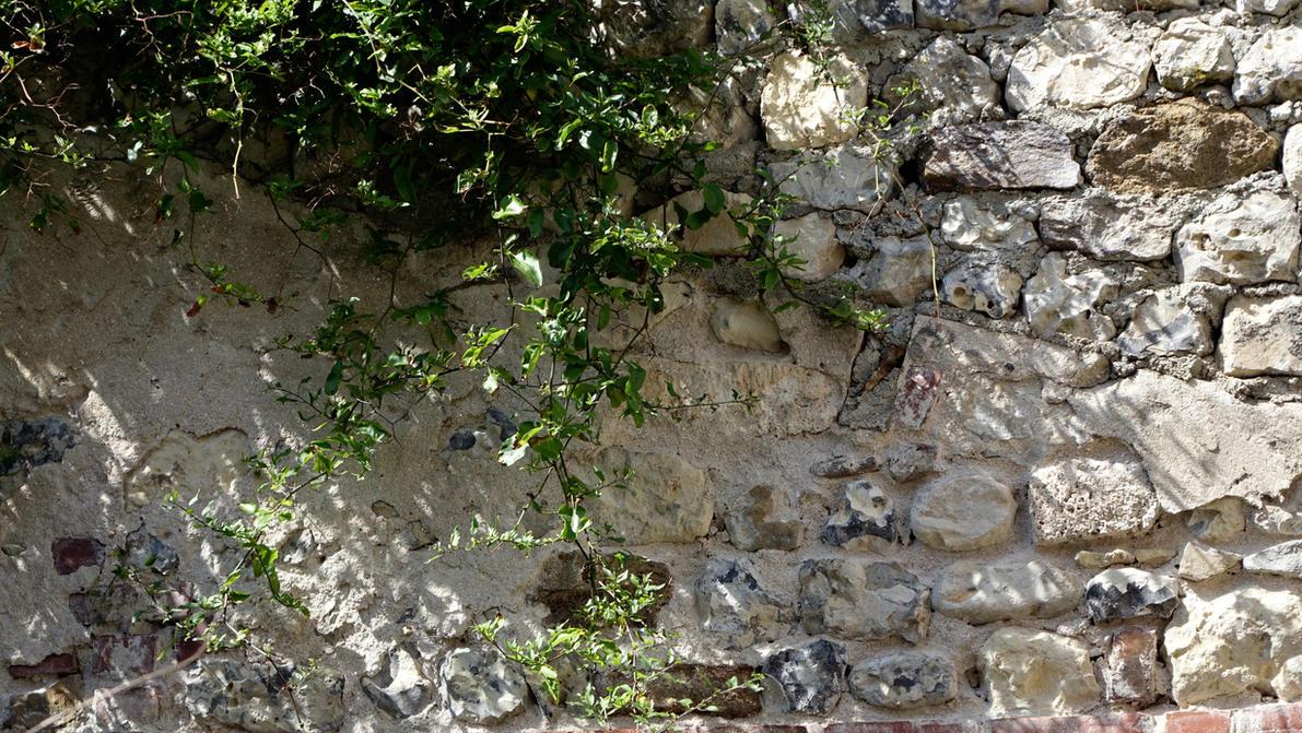 Vieux mur en France by louisdemirabert