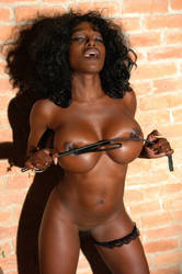 Felina BDSM by louisdemirabert