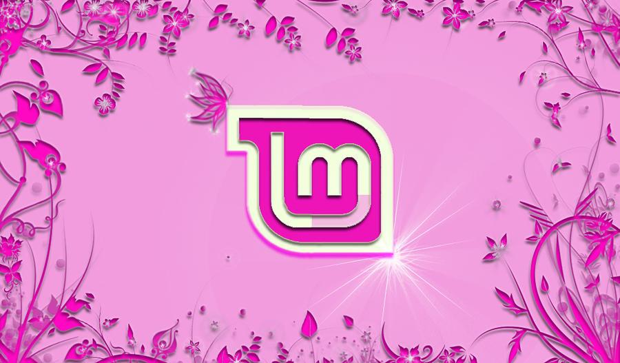 Linux Mint By Touloumpa