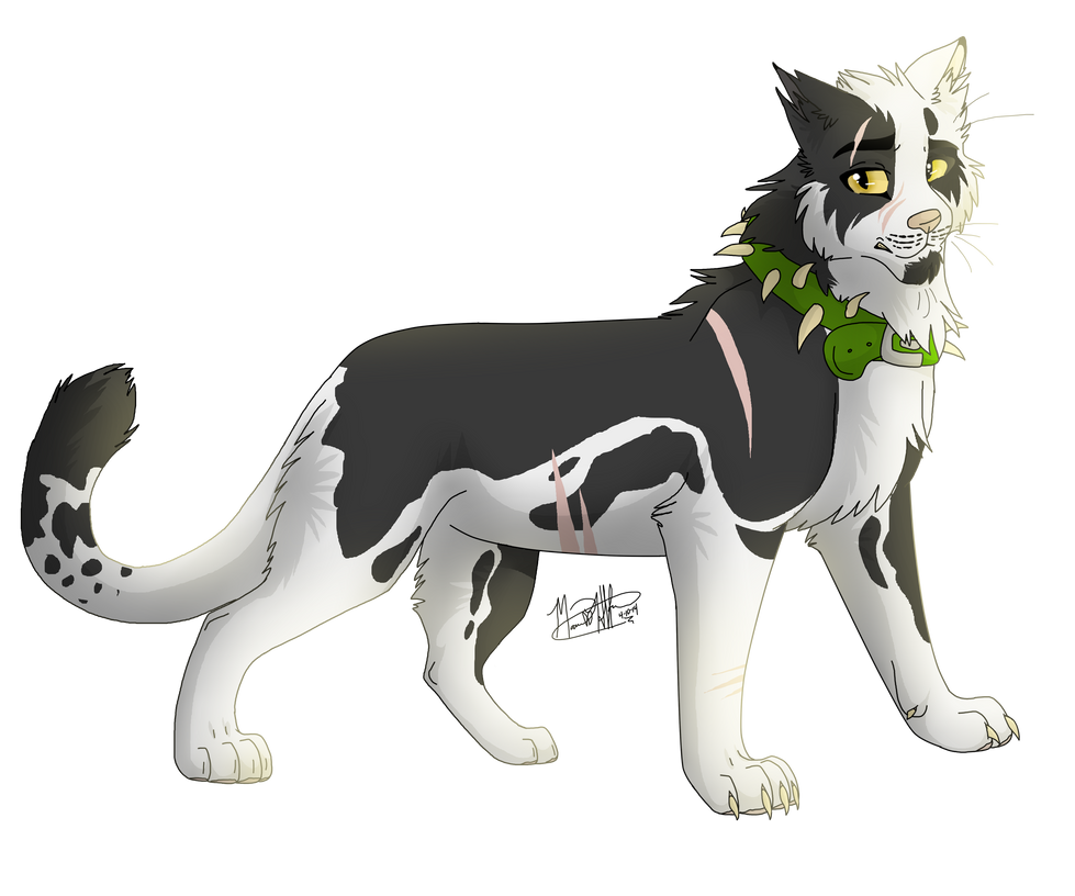 Warrior Cats Kit To Leader Bloodclan: Warrior Cats Online