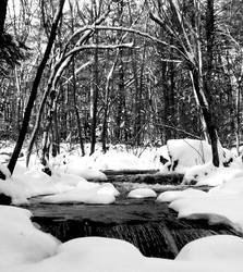 winter wonderland part 4 by devlspetangel