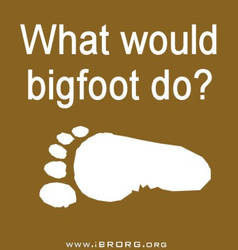 What Would Bigfoot Do?