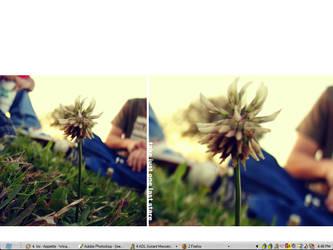 Desktop by ObscureGraffix