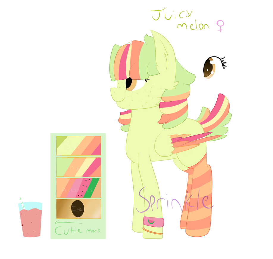 (OC) Juicy Melon - Reference Sheet by SprinkleDashYT