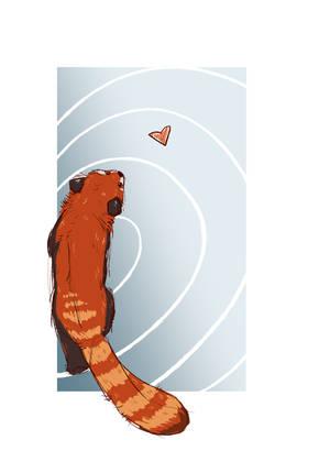 Red panda by LukaAleko