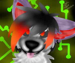 Braziliandog's Profile Picture