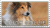Collie rough stamp