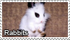 Rabbits stamp by Tollerka