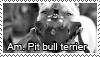 Pit bull stamp