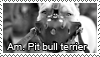 Pit bull stamp by Tollerka