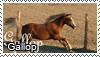 Gallop Stamp by Tollerka