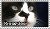 Snowshoe stamp by Tollerka