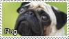 Pugs stamp by Tollerka
