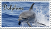 Dolphins stamp by Tollerka