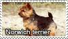 Norwich terriers stamps by Tollerka