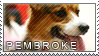 Welsh corgi pembroke stamp by Tollerka