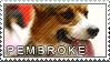 Welsh corgi pembroke stamp by Tollerka