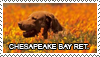 Chesapeake bay retriever stamp by Tollerka