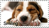 Anim feelings stamps - smiling by Tollerka