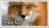 Red fox stamp by Tollerka