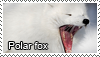 Polar fox stamp by Tollerka