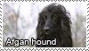 Afgan hound stamp by Tollerka