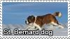 St Bernard dog stamp by Tollerka