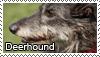 Deerhound stamp by Tollerka