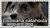 Catahoula cur stamp by Tollerka