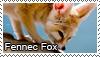 Fennec fox stamp by Tollerka