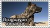Uruguayan Cimarron stamp by Tollerka