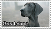 Great dane stamp by Tollerka