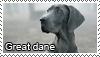 Great dane stamp by Tollerka