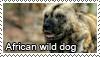 African wild dog stamp by Tollerka