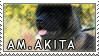 American akita stamp by Tollerka