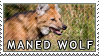 Maned wolf stamp by Tollerka