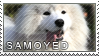Samoyed stamp by Tollerka