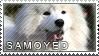 Samoyed stamp by Tollerka