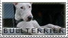 Bullterrier stamp by Tollerka