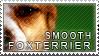 Smooth foxterrier stamp by Tollerka
