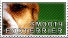 Smooth foxterrier stamp by Tollerka
